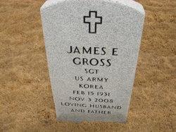 James E Gross
