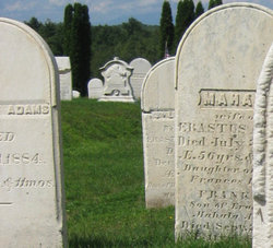 Erastus Adams, Jr