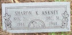 Sharon Kay Ankney