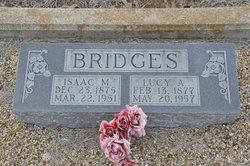 Lucy Ann <i>Wright</i> Bridges