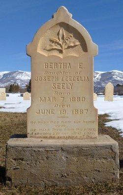 Bertha Elizabeth Seely