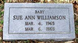 Sue Ann Williamson