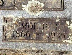 Mary Adaline Mollie <i>Ingle</i> Case