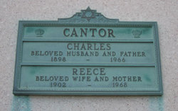 Reece Cantor