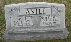 Elias B. Antle