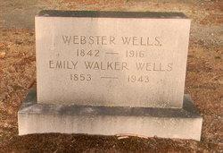Webster Wells