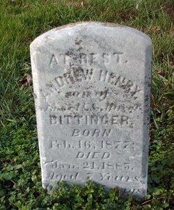 Andrew Henry Bittinger