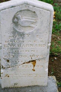 Mary E Barnard