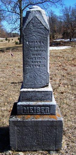Phiana Meiser