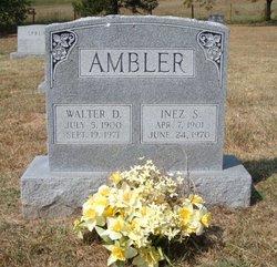 Inez S Ambler