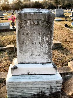 William Theodore W.T. Andrews