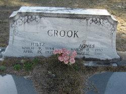 Agnes Crook