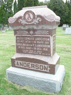 Carolina <i>Mattisdotter</i> Anderson
