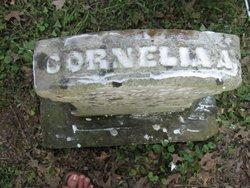 Cornelia Evans