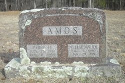 Nellie Maude <i>Waggoner</i> Amos