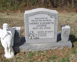 Sherry Elizabeth Cooper