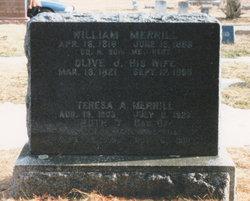 Olive Jane <i>Goodwin / Mason</i> Merrill