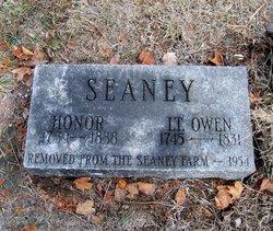 Owen Seaney