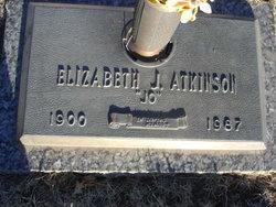 Ellis Albert Atkinson