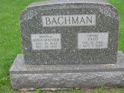 Fred Bachman
