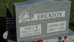 James W Erickson