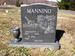 Anthony J. Tony Mannino