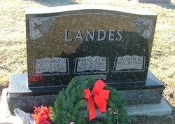 Anthony J. Landes