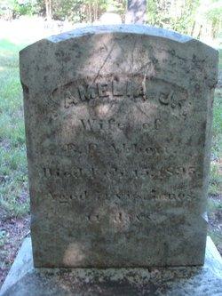 Amelia J. <i>Veazey</i> Abbott