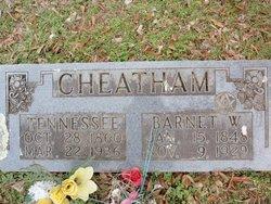 Mary Tennessee <i>Hefley</i> Cheatham