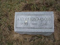 Adrian E. <i>Cotton</i> Arnold