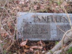 James Franklin Snellen