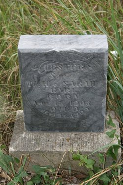 Lester William Earl