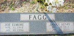 Janice <i>Henry</i> Fagg