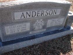 Nancy Elizabeth <i>Flatt</i> Anderson