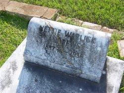 Antoinette Virginia Nettie <i>Warlick</i> Andrews