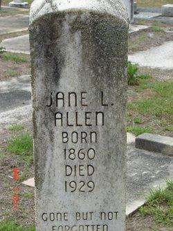 Jane Louvinia <i>Highsmith</i> Allen