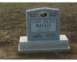 Larry Wilson Baggs