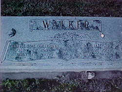 William Vip Walker