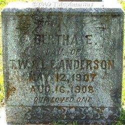 Bertha E Anderson