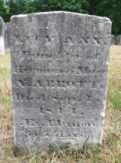 Lucy Ann Abbott