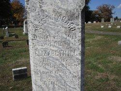 Elizabeth H L Agard