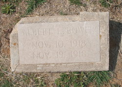 Infant Son Bower