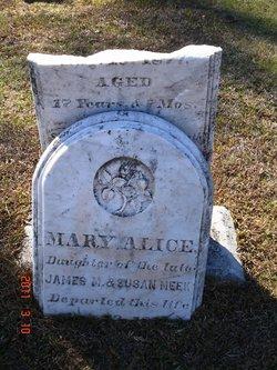 Mary Alice Meek