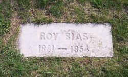 Roy Bias