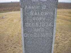 Annie B Baldwin