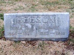 Anna S. <i>Sedgwick</i> Beeson