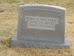 Elvira Virginia Viria <i>Snidow</i> DeLaney