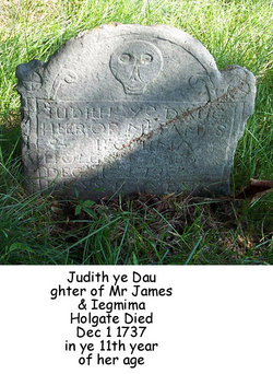 Judith Holgate