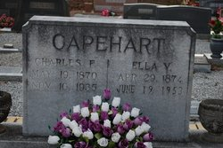 Charles Franklin Capehart