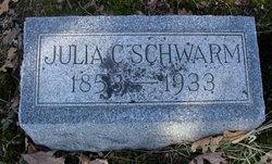 Julia C Schwarm